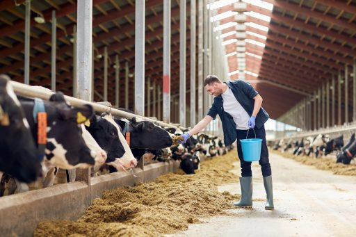 1542795603_bigstock-agriculture-industry-farming-169447877
